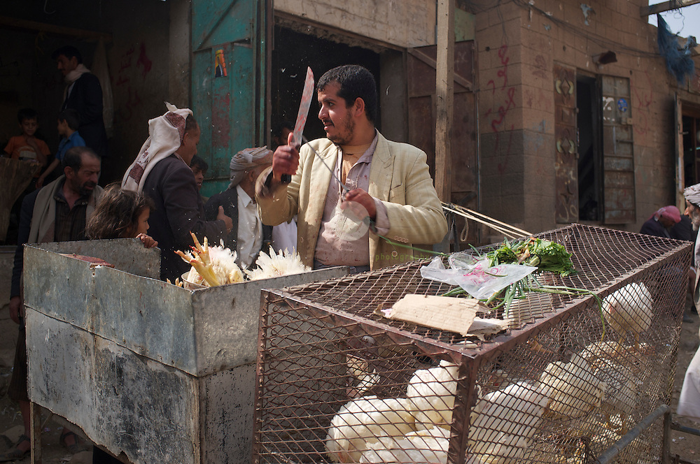 Market in Wadi Dhar: ASIA, YEMEN, WADI DHAR near SANA, 24.06.201: A street market takes place on an early Friday morning in Wadi Dhar, seemingly unaffected by the recent turmoil in the country. Chickens are butchered and sold to shoppers.
