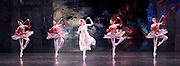 The Nutcracker <br /> choreography by Sir Peter Wright <br /> at the <br /> Birmingham Royal Ballet <br /> Birmingham Hippodrome, Great Britain <br /> 24th November 2017 <br /> <br /> Dance of the Mirlitons<br /> <br /> Photograph by Elliott Franks <br /> Image licensed to Elliott Franks Photography Services