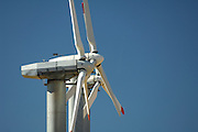 Windmills, Windmill, Wind Farm, Wind Power, Wind Turbine, Tehachapi, California
