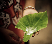 A young boy holds a leaf with fresh water from the Fairy Springs, a scenic stream near Mui Ne, Vietnam, Southeast Asia, in April, 2008.