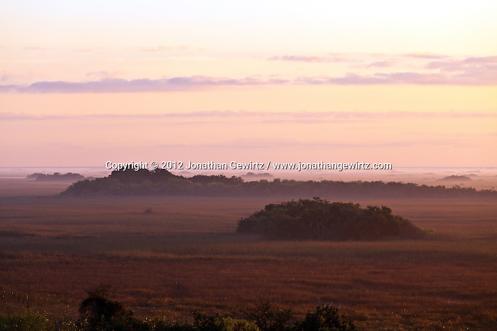 Ground fog at sunrise on the sawgrass prairie in the Shark Valley section of Everglades National Park, Florida. WATERMARKS WILL NOT APPEAR ON PRINTS OR LICENSED IMAGES.