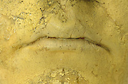 close up of mouth on a sculpture