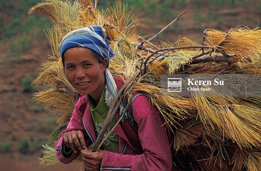 Pumi peopole carrying straw, Lijiang, Yunnan Province, China