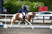 28 - 11th May - Dressage