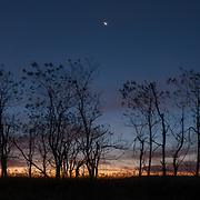 A crescent moon is seen in the early morning sky at dawn, as seen from Big Meadows along Skyline Drive.