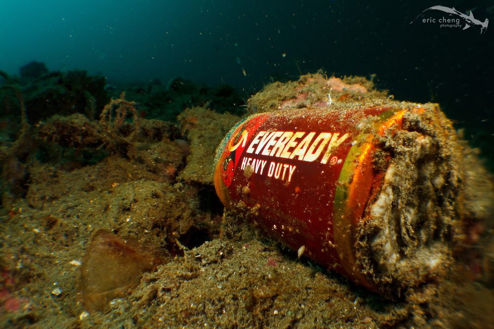 A discarded Eveready Heavy Duty battery on the ocean floor. Ambon, Maluku, Indonesia.