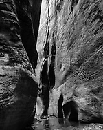 North Fork of the Virgin River, a small stream in the dry season, flows between close walls of sandstone, © 1990 David A. Ponton