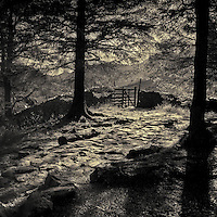 Gate to Fell Foot, Langdale, Lake District, Cumbria