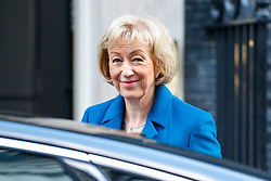© Licensed to London News Pictures. 17/01/2017. London, UK. Environment Secretary ANDREA LEADSOM attends a cabinet meeting in Downing Street on Tuesday, 17 January 2017 before Prime Minister Theresa May's Brexit plan speech. Photo credit: Tolga Akmen/LNP