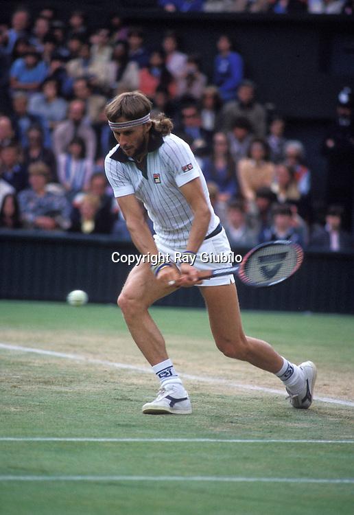 Wimbledon 1981<br /> <br /> Bjorn BORG (Swe)