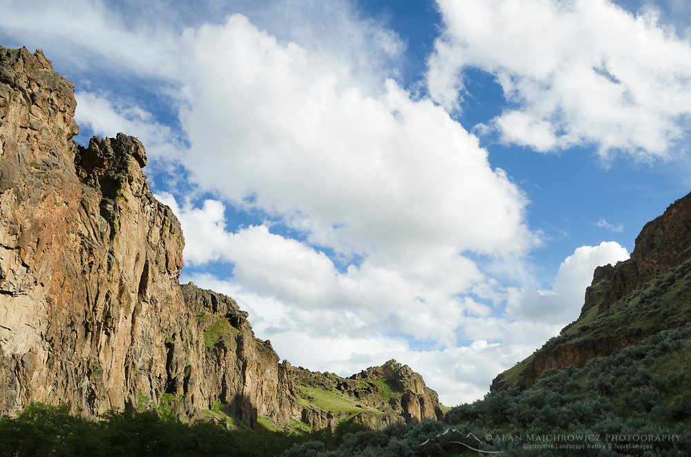 Succor Creek State Natural Area Oregon. Canyon walls are composed of volcanic tuff. Area famous for thunder egg collectors.