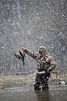 duck hunter in a duck marsh with a harvested mallard while snow falls
