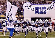 The Indianapolis Colts run out of the tunnel during player introductions during the NFL week 8 football game against the Houston Texans on Monday, November 1, 2010 in Indianapolis, Indiana. The Colts won the game 30-17. ©Paul Anthony Spinelli