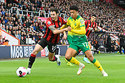 Adam Smith (15) of AFC Bournemouth battles for possession with Jamal Lewis (12) of Norwich City during the Premier League match between Bournemouth and Norwich City at the Vitality Stadium, Bournemouth, England on 19 October 2019.
