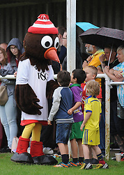 Bristol City mascot Scrumpy the Robin interacts with young fans  - Photo mandatory by-line: Dougie Allward/JMP - Mobile: 07966 386802 - 05/07/2015 - SPORT - Football - Bristol - Brislington Stadium - Pre-Season Friendly