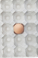 One brown egg in an empty carton