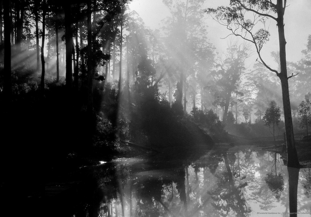 Early Morning, Pemberton, Western Australia, 1930