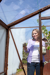 Painting shading on to a greenhouse window