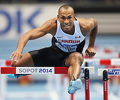 2014 IAAF World Indoor Championships