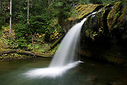 Iron Creek Falls, located in the Gifford Pinchot National Forest near Mount St. Helens, fans out and drops a couple dozen feet into a splash pool.