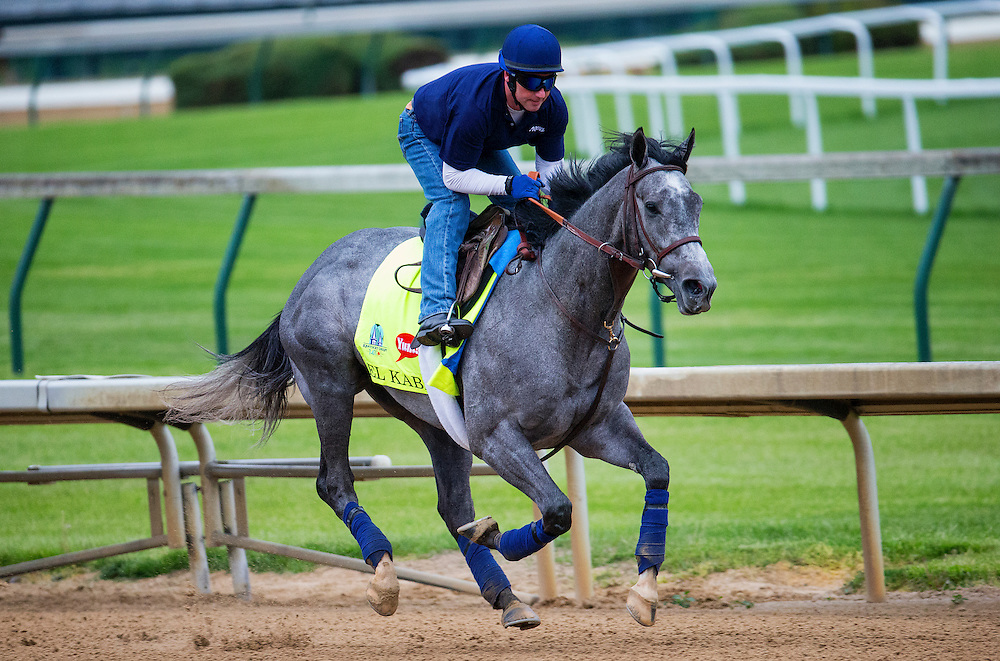 April 30, 2015: El Kabeir gallops in preparation for the Kentucky Derby at Churchill Downs Louisville Ky. Alex Evers/ESW/CSM