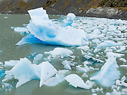 Icebergs broken from Grey Glacier float in Lago Grey in Torres del Paine National Park, Chile. The foot of South America is known as Patagonia, a name derived from coastal giants, Patagão or Patagoni, who were reported by Magellan's 1520s voyage circumnavigating the world and were actually Tehuelche native people who averaged 25 cm (or 10 inches) taller than the Spaniards.