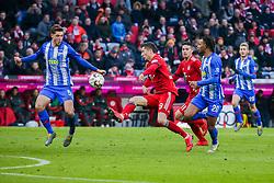 23.02.2019, Allianz Arena, Muenchen, GER, 1. FBL, FC Bayern Muenchen vs Hertha BSC, 23. Runde, im Bild v. li. im Zweikampf &nbsp;Niklas Stark (Hertha BSC Berlin), Robert Lewandowski (FC Bayern Muenchen) und Valentino Lazaro (Hertha BSC Berlin) // during the German Bundesliga 23th round match between FC Bayern Muenchen and Hertha BSC at the Allianz Arena in Muenchen, Germany on 2019/02/23. EXPA Pictures &copy; 2019, PhotoCredit: EXPA/ Eibner-Pressefoto/ Tom Weller<br /> <br /> *****ATTENTION - OUT of GER*****