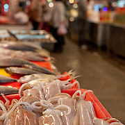 Fresh squid for sale at Zhiyou Evening Market, Kaohsiung City, Taiwan