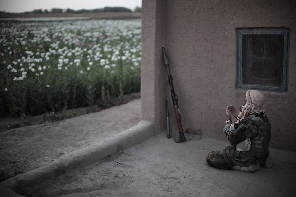 TOPSHOTS<br /> An Afghan National Army soldier prays during a foot patrol with unseen US Marines from India Company, 3rd Battalion, 6th Marines near a poppy field in a stronghold Taliban area of Marjah, Helmand province, southern Afghanistan, on April 5, 2010. Nearly two months after US Marines led what was billed the biggest offensive against the Taliban in more than eight years of war, troops still come under daily fire from insurgents and bombs are still exploding.     TOPSHOTS/AFP PHOTO/Mauricio LIMA