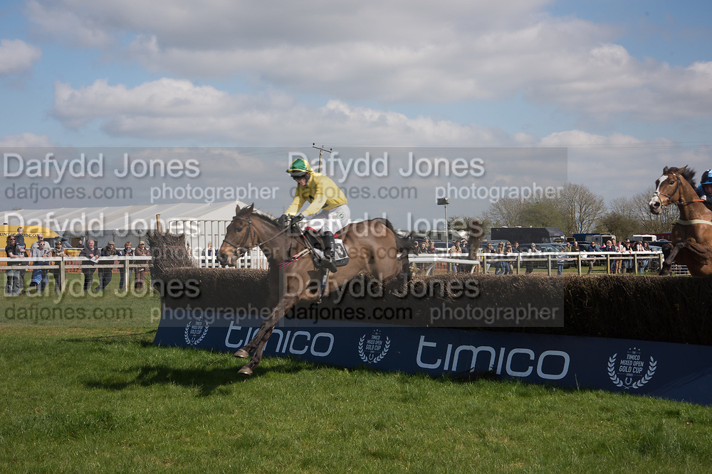DABINETT MOON, Knight Frank Heythrop Hunt Members, Subscribers and Farmers race. Heythrop Point to Point, Cocklebarrow, 2 April 2017.