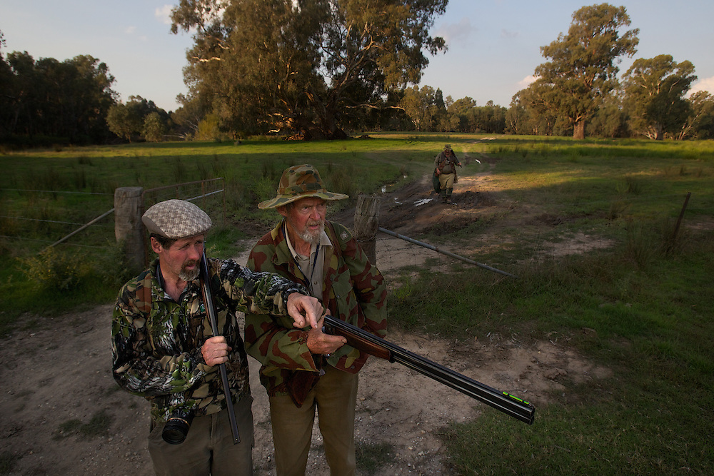 Collin Wood (left), Lionel Swift and Robert Hodder (behind) move to their positions for the afternoon shoot. Duck hunting season openning weekend on the Murray River near Howlong. Pic By Craig Sillitoe CSZ/The Sunday Age 22/3/2011 melbourne photographers, commercial photographers, industrial photographers, corporate photographer, architectural photographers, This photograph can be used for non commercial uses with attribution. Credit: Craig Sillitoe Photography / http://www.csillitoe.com<br />