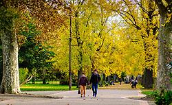 An autumn scene in the Jardin des Plantes, Toulouse, France<br /> <br /> (c) Andrew Wilson   Edinburgh Elite media