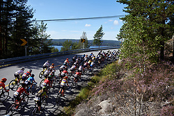 The peloton head toward Halden during Ladies Tour of Norway 2019 - Stage 4, a 154 km road race from Svinesund to Halden, Norway on August 25, 2019. Photo by Sean Robinson/velofocus.com