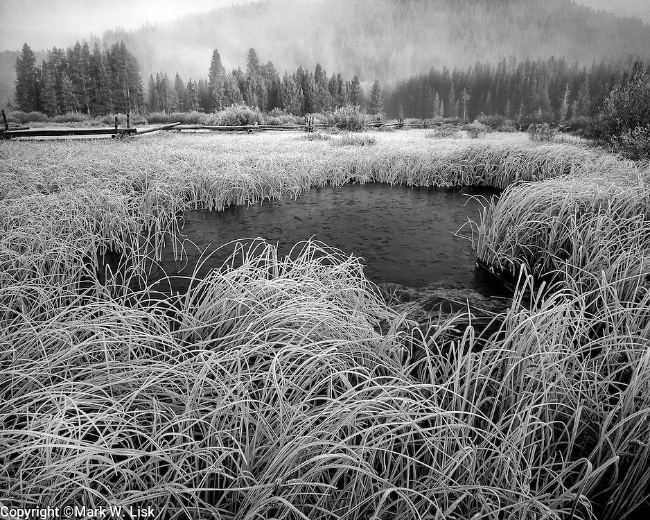 Ice begins to freeze in the back water of Stanlely Lake, Sawtooth National Forest.