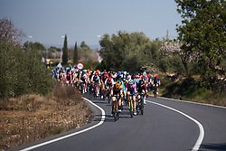 The pace picks up at Setmana Ciclista Valenciana 2019 - Stage 2, a 100 km road race from Borriol to Vila-Real, Spain on February 22, 2019. Photo by Sean Robinson/velofocus.com