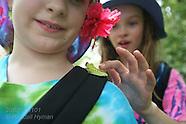 11: ECOTEACH KIDS, FROGS & BUTTERFLIES