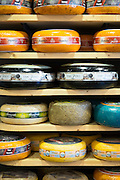 Cheese wheels on display shelves at traditional cheese shop 't Kaaswinkeltje in Gouda, Holland, The Netherlands