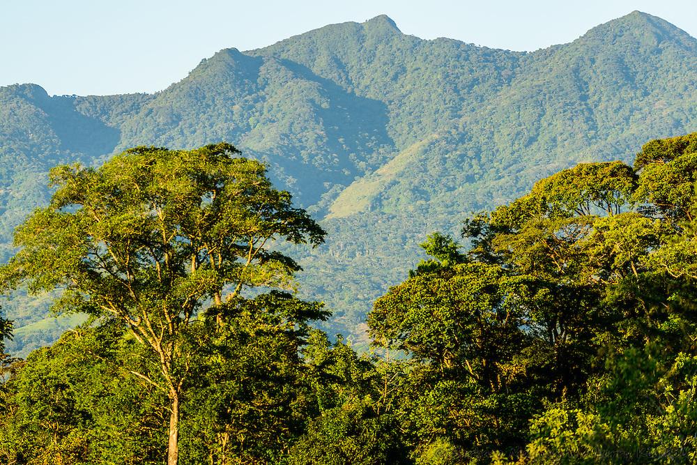 View of  Cerro Mariposa (Butterfly Mountain) at sunrise; Santa Fe, Panama