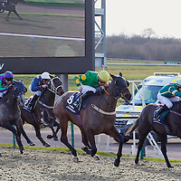 Lingfield 19th February