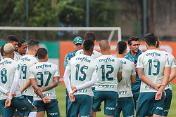 November 7, 2017 - Brazil - SAO PAULO, SP - 07.11.2017: TREINO DO PALMEIRAS - The technician Alberto Valentim talks with players during the training of Palmeiras held at the Club Soccer Academy in Sao Paulo (SP) (Credit Image: © Fotoarena via ZUMA Press)