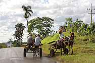 Men on horse carts stopping to talk in Bahia Honda, Artemisa, Cuba.