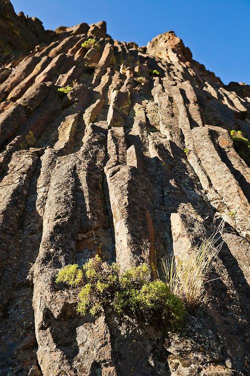 A wall of andesite columns in Tieton river canyon, Washington, USA.