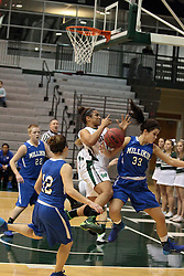 15 January 2014:  Gabrielle Holness during an NCAA women's division 3 basketball game between the Millikin Big Blue and the Illinois Wesleyan Titans in Shirk Center, Bloomington IL