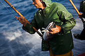 Traditional tuna fishing in Azores  by Miguel Ribeiro Fernandes