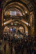 Friday evening, Natural History Museum, London. 30 October 2015