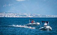 Race at Napoli<br /> 52 a Capri - Napoli<br /> FINA Open Water Swimming Grand Prix 2017<br /> September 3rd, 2017 - 03-09-2017<br /> &copy;Chiara Perlino/Deepbluemedia/Inside foto