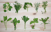 Herbs on wooden background - studio shot