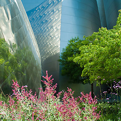 Disney Concert Hall exterior detail with landscaping. Frank Gehry Architect.Los Angeles, CA  USA.Editorial use only. Not Released