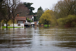 Riverside homes in Wargrave, Berkshire are vulnerable to the fast flowing, rising waters as heavy rains in the River Thames catchment area and saturated ground causes the river to rise to within inches of bursting its banks.. April 02 2018.