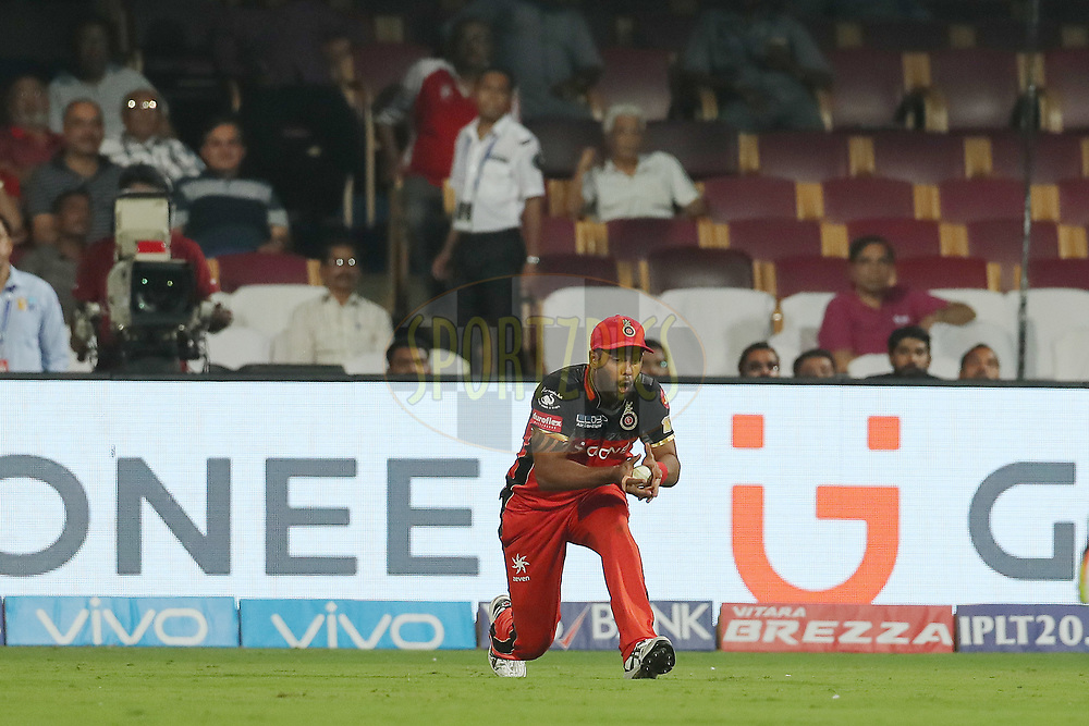 Stuart Binny of the Royal Challengers Bangalore takes the catch to dismiss Sanju Samson of the Delhi Daredevils during match 5 of the Vivo 2017 Indian Premier League between the Royal Challengers Bangalore and the Delhi Daredevils held at the M.Chinnaswamy Stadium in Bangalore, India on the 8th April 2017<br /> <br /> Photo by Ron Gaunt - IPL - Sportzpics